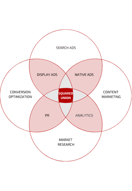 SquaredUnion Services Venn Diagram